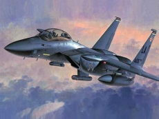 F-15E Strike Eagle (U.S.A.F. Fighter/Attacker) (HASEGAWA) 1/48