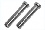 Servo Saver Shaft(2pcs/DBX/DST)