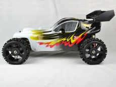 RiverHobby Buggy 2WD 2.4G 1:5